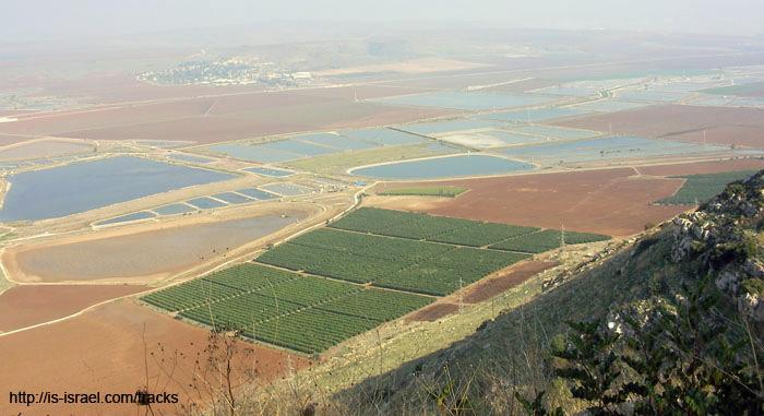 Вид с горы Гильбоа на Эмек Изреэль