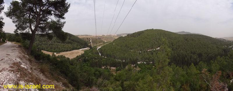 Вид на лес ха-Зореа