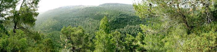 Панорама на заповедник Масрек и Иудейские горы